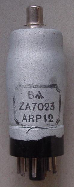 ARP12